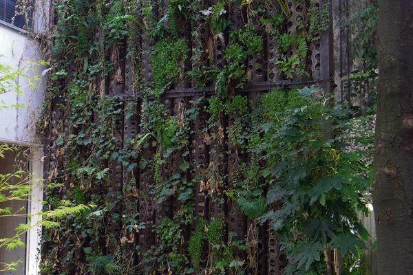Un jardin vertical planté dans des tubes perforés - Cahiers ...
